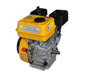 Двигатель Forte F210G шпонка 20мм