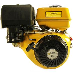 Двигатель Forte F390G