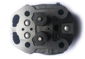 Головка цилиндра голая  ZS1100