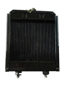 Радиатор двигателя TY290 Xt 180 (TY290.13.001)